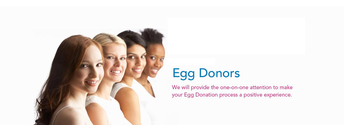 Gestantial surrogacy, egg donation program in india